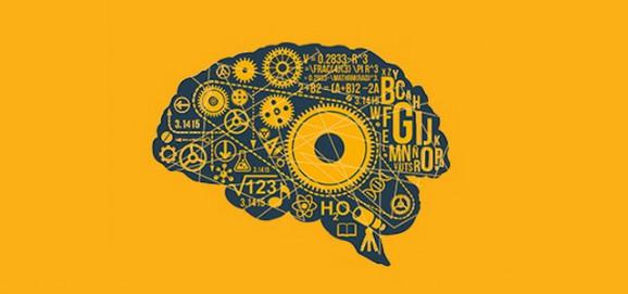 educando_al_cerebro.jpg