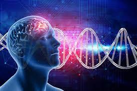 epigenetica salud cuerpo mente